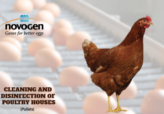 CLEANING AND DISINFECTION OF POULTRY HOUSES